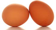 CSA Organic Egg Add On