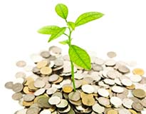 Small Investment - Tree Sprout Growing out of Pile of Coins