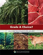 Solutions for Deforestation-Free Meat Report Cover - Union of Concerned Scientists