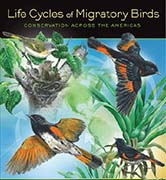 Life Cycles of Migratory Birds - Art by Barry Kent MacKay for Environment for the Americas