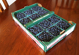 Flat of Blueberries from Dragon Spring Farm