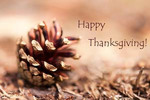 Pinecone with words Happy Thanksgiving