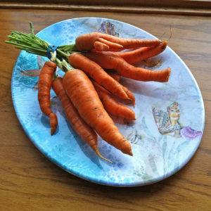 Bunch of Ugly Carrots on a Plate