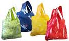 Sierra Club Reusable Bags