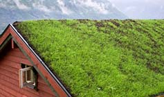 Home with Vegetated (Green) Roof