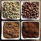 Green, Roasted, Ground, and Instant Coffee