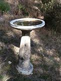 Author's Bird Bath