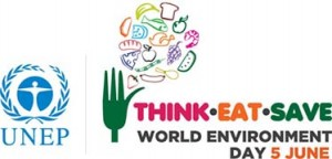 UNEP World Environment Day 2013 Logo - Think. Eat. Save.