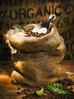 Burlap Sack of Organic Coffee Beans