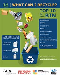 America Recycles Day 10 in the Bin Flyer