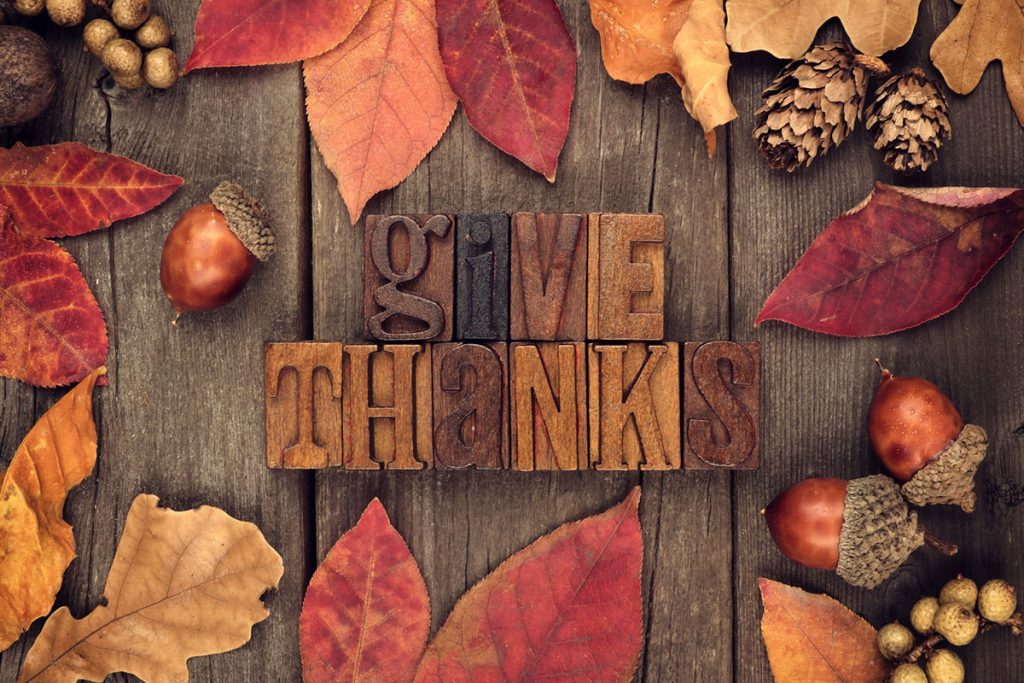 Give Thanks Block Letters with Fall Leaves, Acorns, and Pine Cones