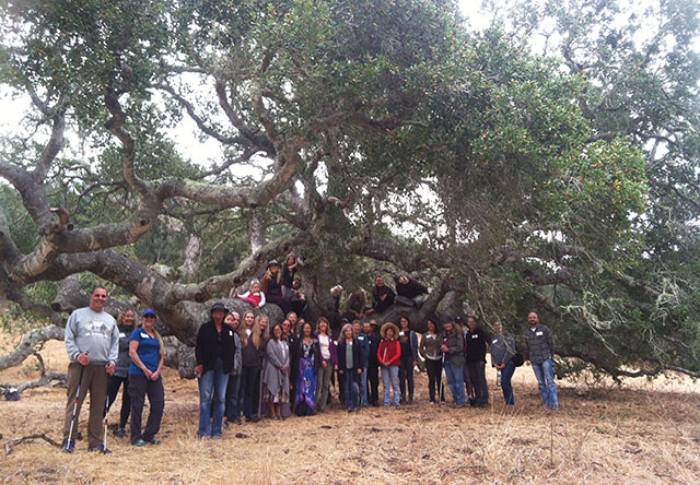 Group Photo Beneath Ancient Oak Tree in El Chorro Regional Park, San Luis Obispo, CA