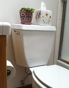 Dual Flush High Efficiency Toilet