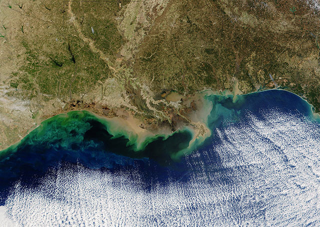 Dead Zone along Louisiana Coastline in Gulf of Mexico