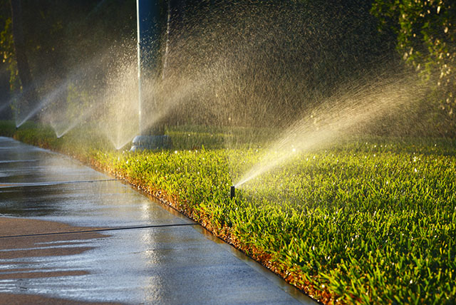Sprinklers Water Turfgrass Lawn and Sidewalk