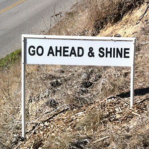 Go Ahead and Shine - Happiness Sprinkling Yard Sign - November