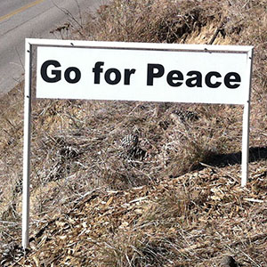 Go for Peace - Happiness Sprinkling Yard Sign - December
