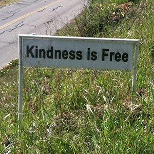 Kindness is Free - Happiness Sprinkling Yard Sign - May