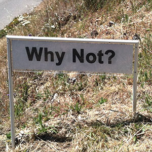 Why Not - Happiness Sprinkling Yard Sign - June