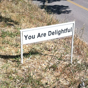 You Are Delightful - Happiness Sprinkling Yard Sign - July