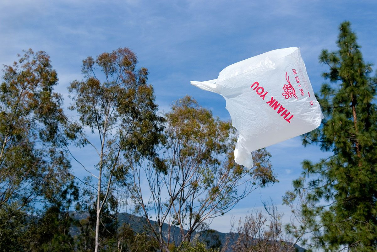 Three Easy Ways to Cut Your Single-Use Plastic Bag Waste