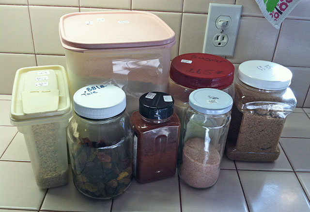 Various Sizes of Reusable Plastic and Glass Containers