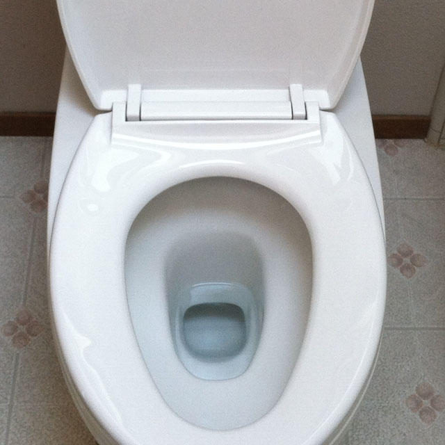 High Efficiency Dual Flush Toilet Seat and Bowl