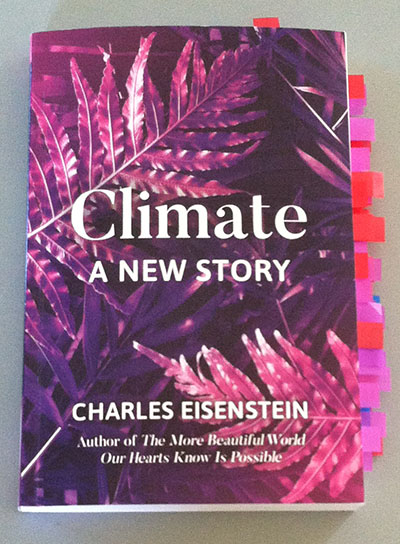 My Copy of Climate A New Story Bristling with Sticky Flags