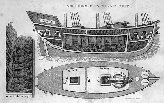 Cross-Section of the Brazilian Slave Ship Veloz in 1830