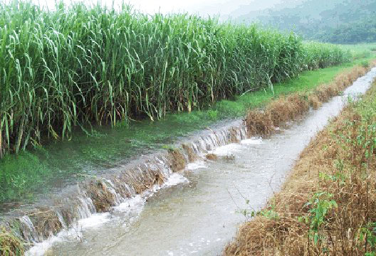 Wet Season Runoff from Sugar Cane Fields in Queensland, Australia