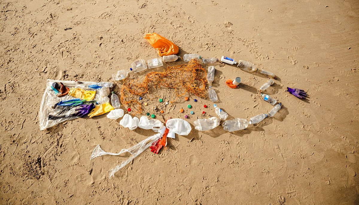 Coastal Cleanup Day – Why it Matters