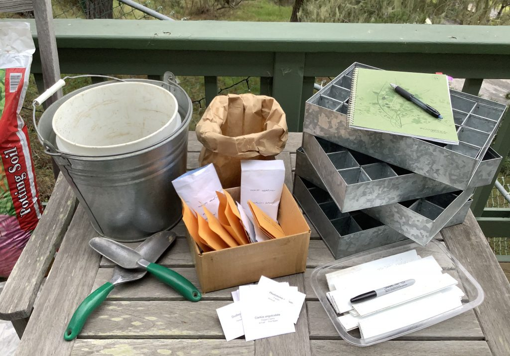 Native Plant Seed Planting Materials on Wood Table